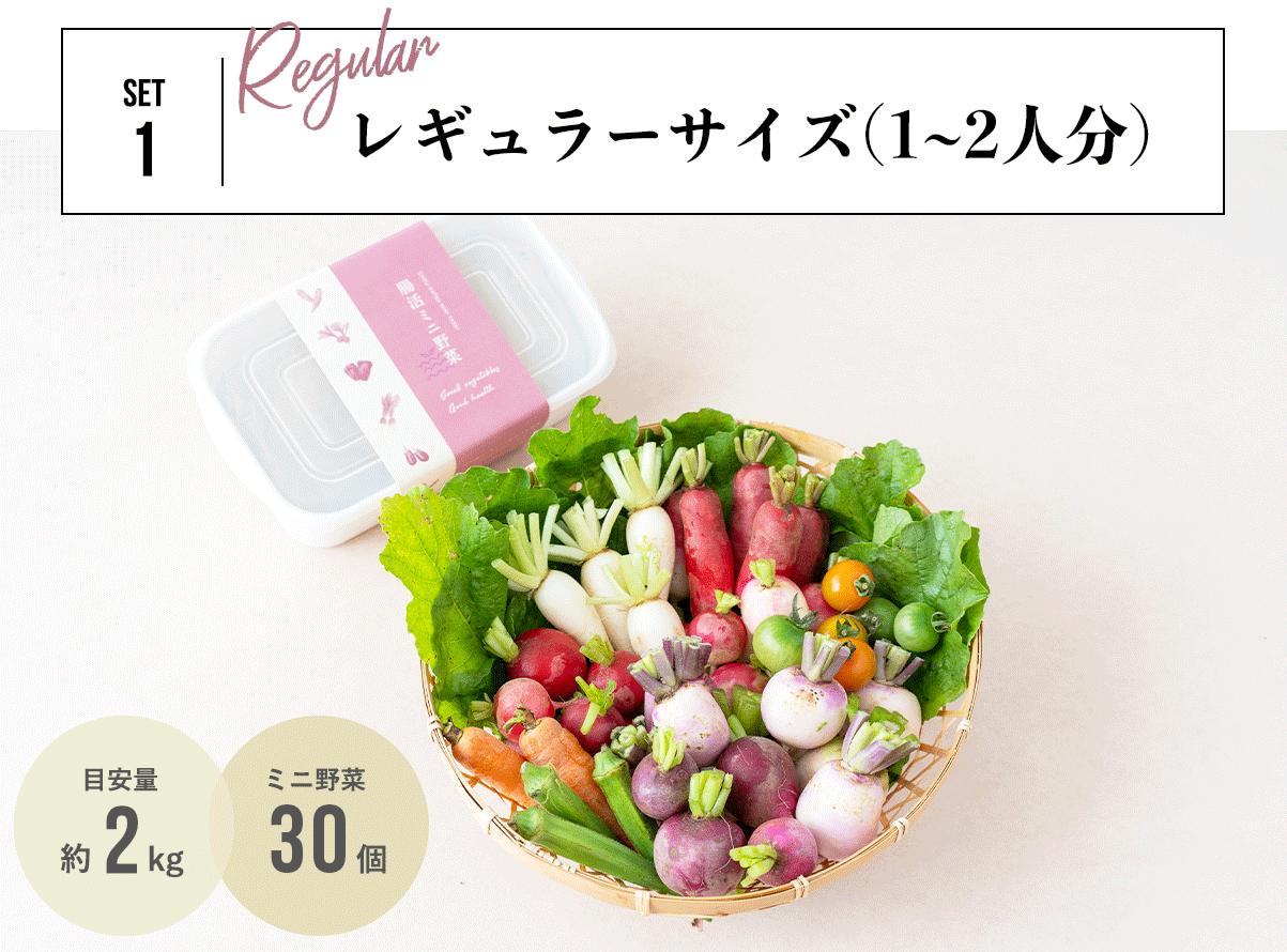 腸活ミニ野菜レギュラーセット